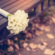 A white wedding bouquet on a bench.
