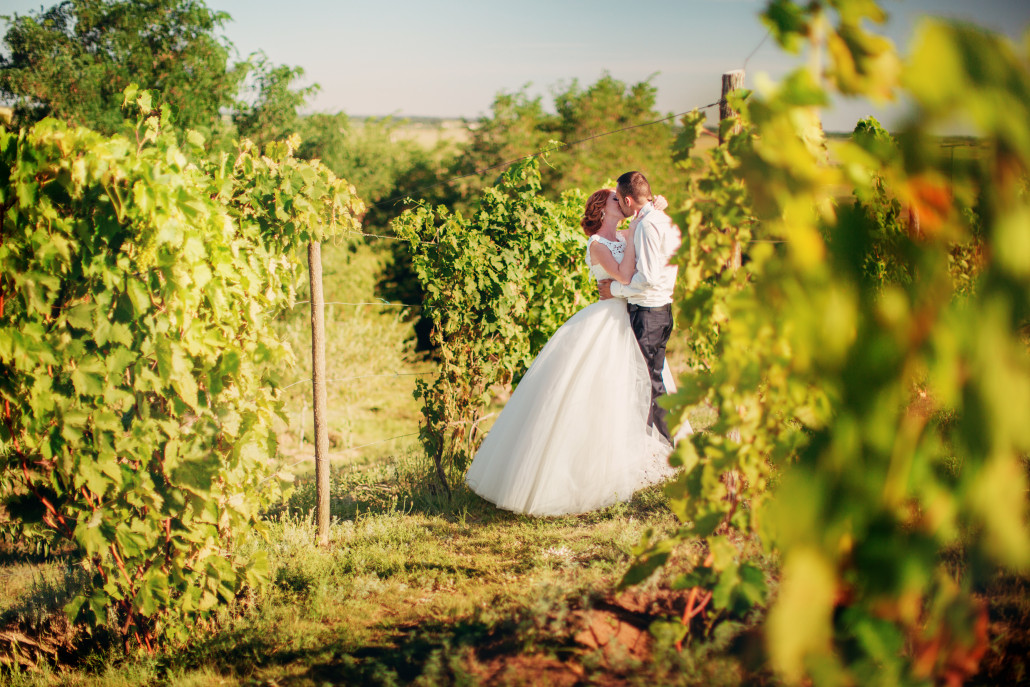 A couple in a vineyard on their wedding day.
